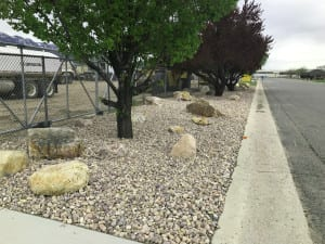 Oak Creek Plum Utah Landscaping Rock 15 inch