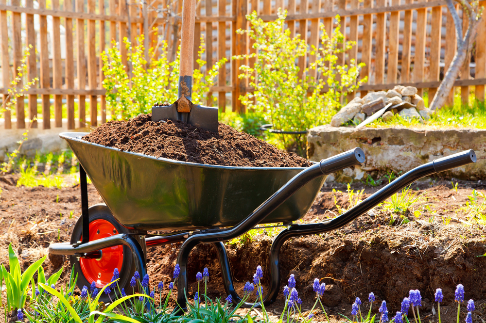 landscaping soil compaction risks remedies