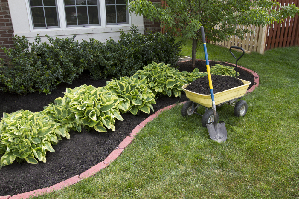 : landscaping topsoil nutrients amendments