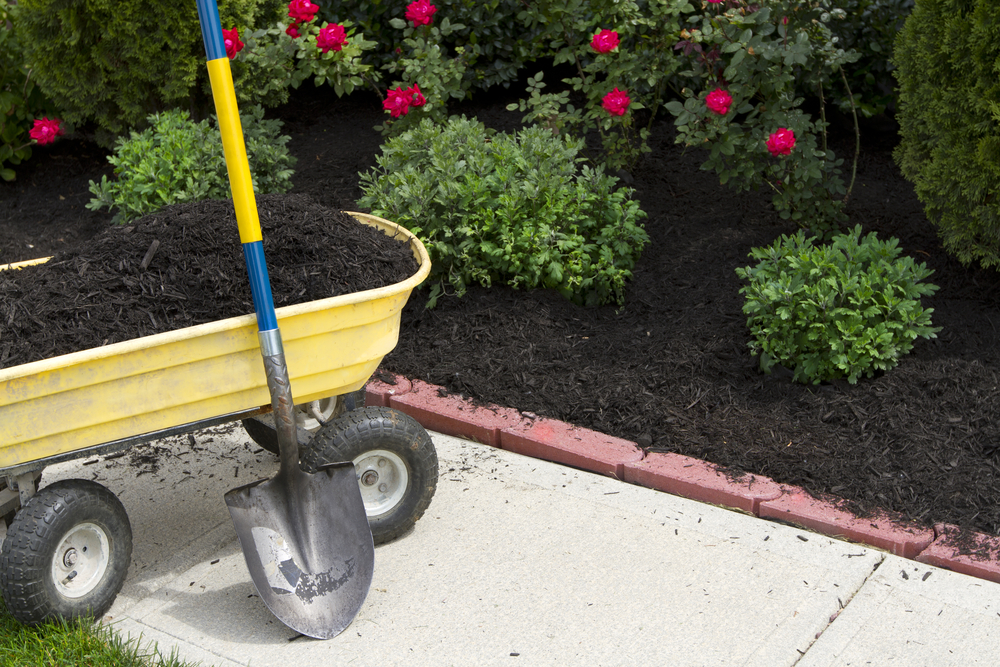 Are you concerned your topsoil isn't providing proper nutrients to plants in your landscape? Here are some basics on soil amendments and nutrients.